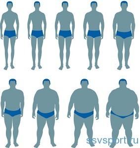 Соотношение роста и веса у мужчин - виды телосложения